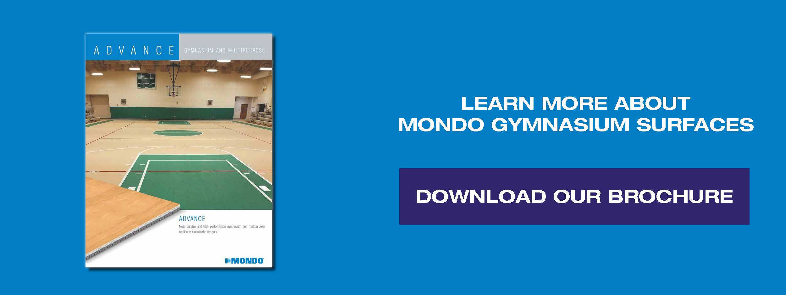 Download our Gymnasium Brochure